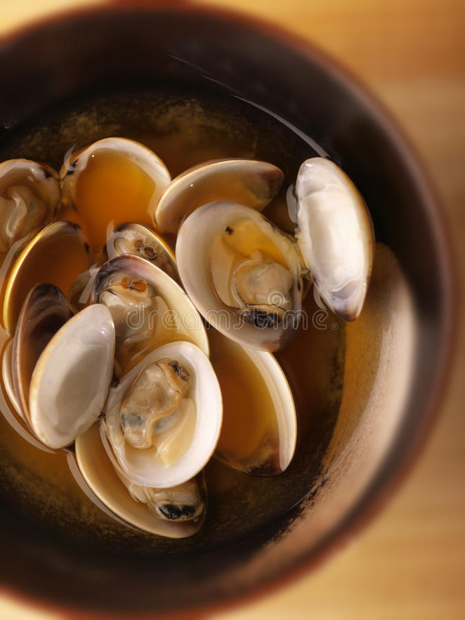 Asian fresh clams broth. Close up of asian fresh clams broth stock photography
