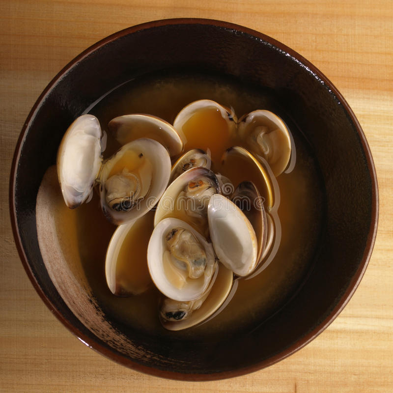 Download Asian fresh clams broth stock photo. Image of lunch, fresh - 12059574