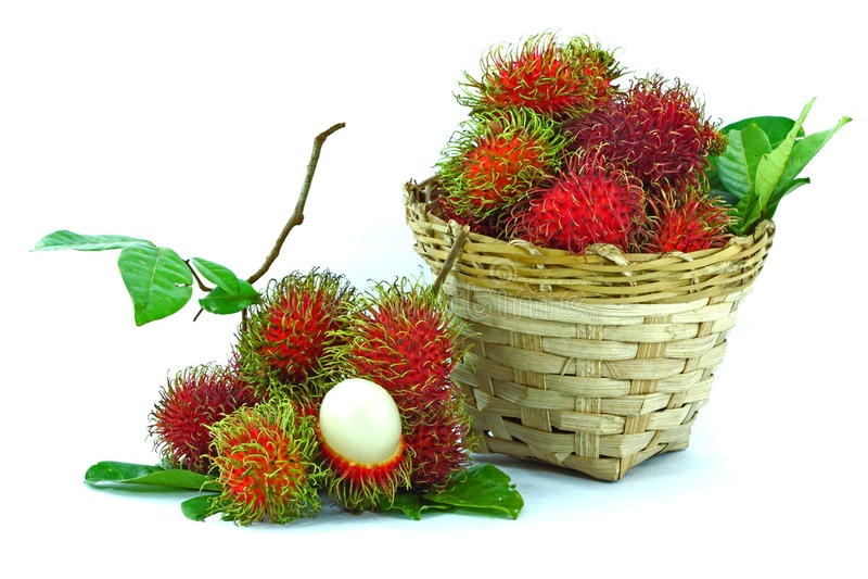 Asian fruit rambutan. On the plain background royalty free stock photos