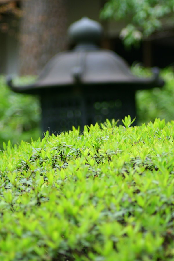 Free Asian Garden Royalty Free Stock Photography - 2206867