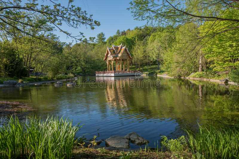 Asian garden with pond and temple, westpark munich royalty free stock image