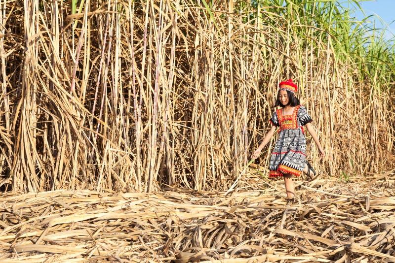 Download Asian girl posing stock image. Image of human, girl - 109113181
