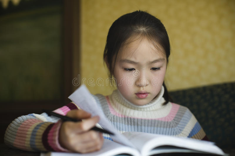 Asian girl studying royalty free stock photography