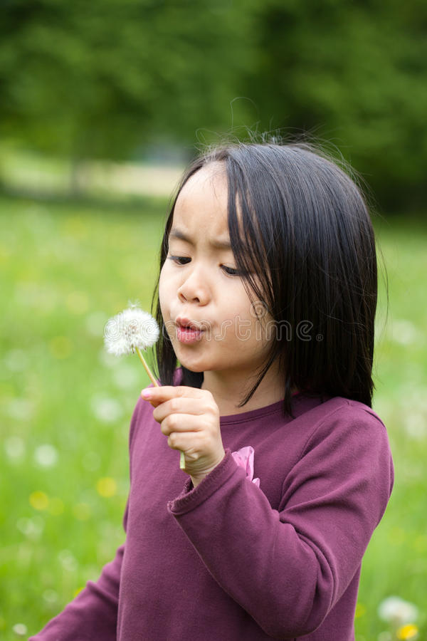 Free Asian Girl With Sonchus Royalty Free Stock Image - 43719516
