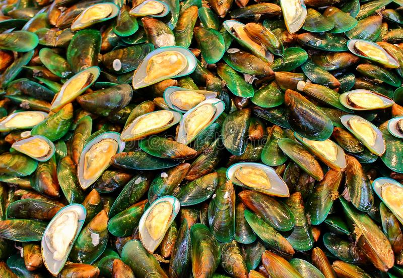 Asian green mussel on street market royalty free stock image