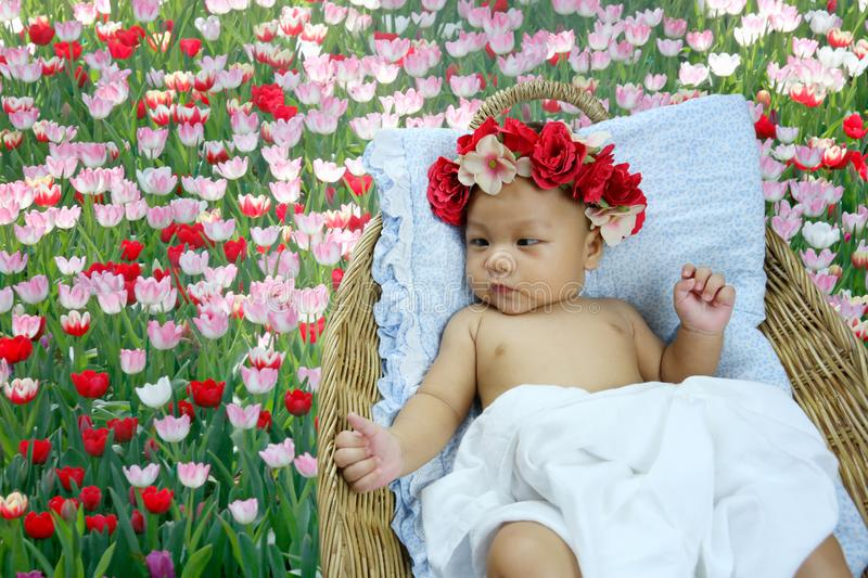 Asian Infant want to sleeping in to wicker baskets royalty free stock image