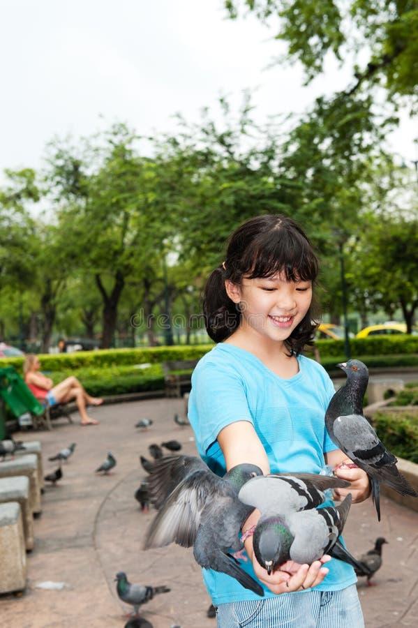 Asian kid feeding pigeons royalty free stock image