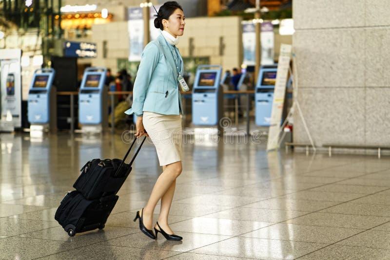 Asian Korean air flight attendant in Incheon International airport royalty free stock photo