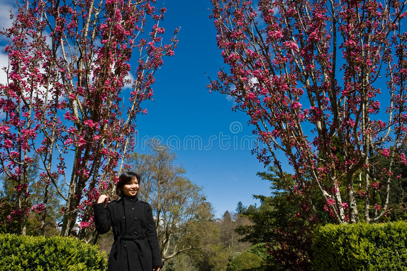 Asian Lady In A Pink Flower Garden Royalty Free Stock Images