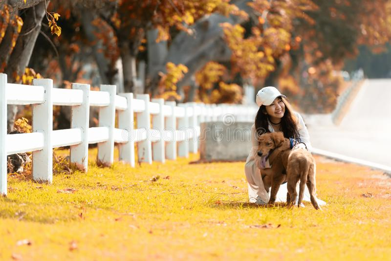 Asian lifestyle woman playing and hug young golden retriever friendship dog in outdoor stock photos