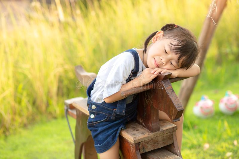 Asian little child girl riding on a wooden toy horse in the green grass garden. stock photography