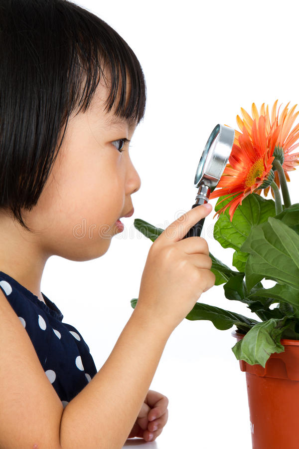 Asian Little Chinese Girl Looking at Flower through a Magnifying stock photography