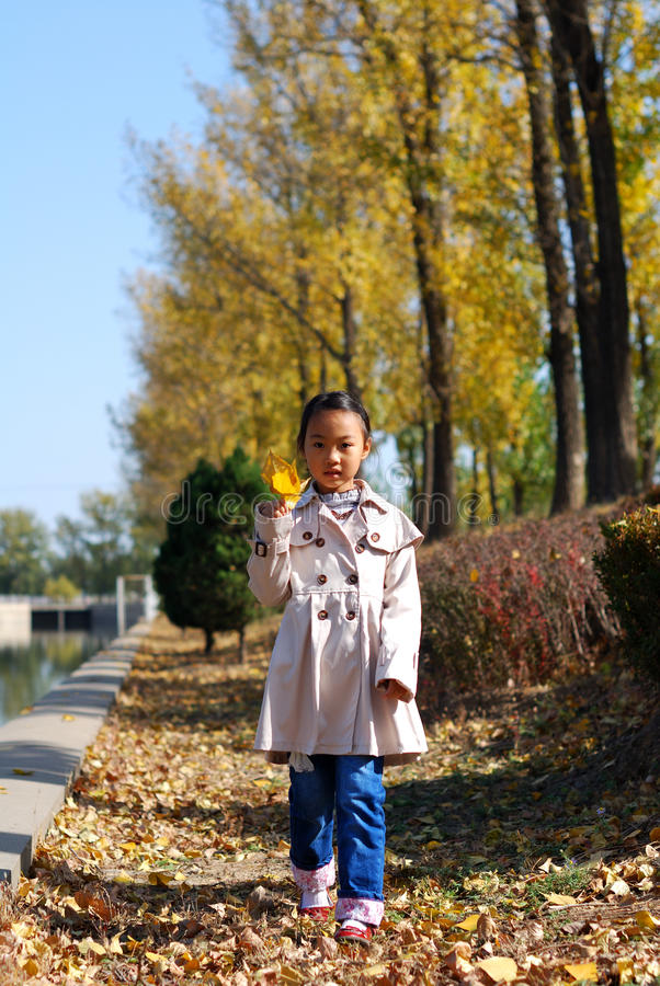 Download Asian Little Girl In Autumn Stock Photography - Image: 28492112