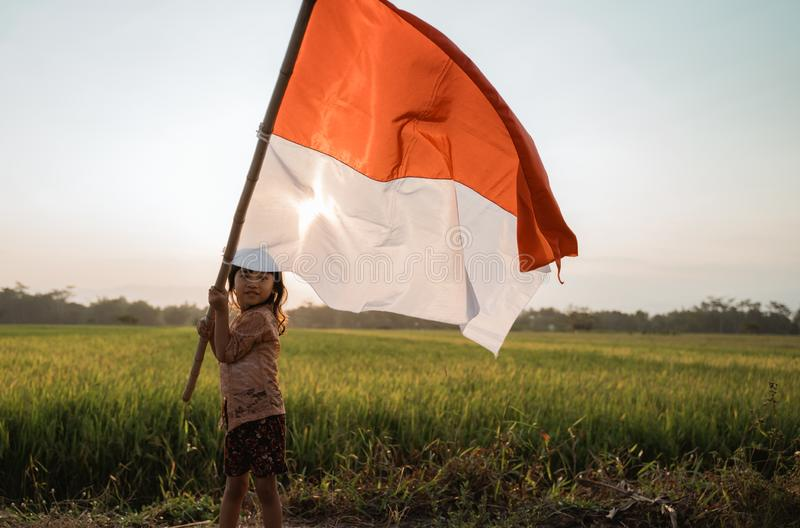 Asian little girl flapping Indonesian flag. With spirit in the rice field royalty free stock photo