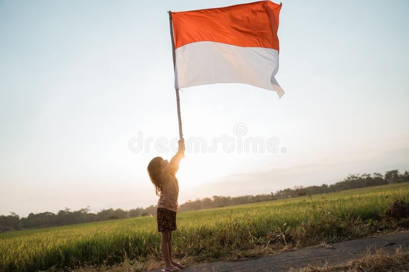 Asian little girl flapping Indonesian flag. With spirit in the rice field stock image
