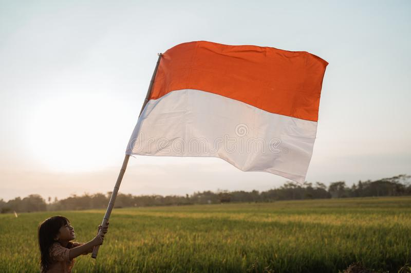 Asian little girl flapping Indonesian flag. With spirit in the rice field royalty free stock photography