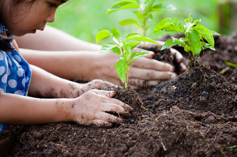 Asian little girl and parent planting young tree on black soil. Together as save world concept stock photography