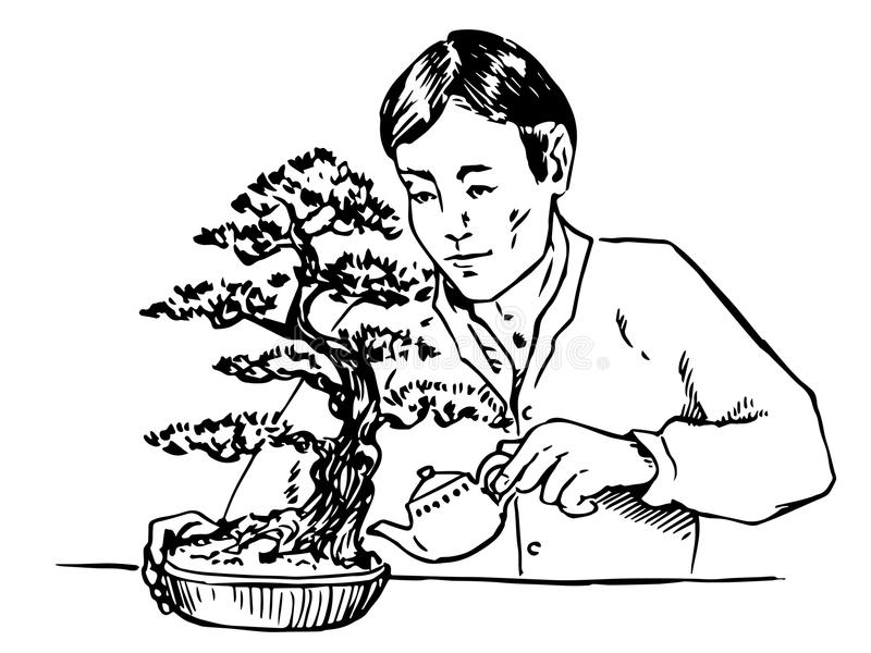 Asian man carefully watering bonsai, vector outline illustration. Asian man carefully watering bonsai, hand drawn doodle, sketch in pop art style, vector outline stock illustration