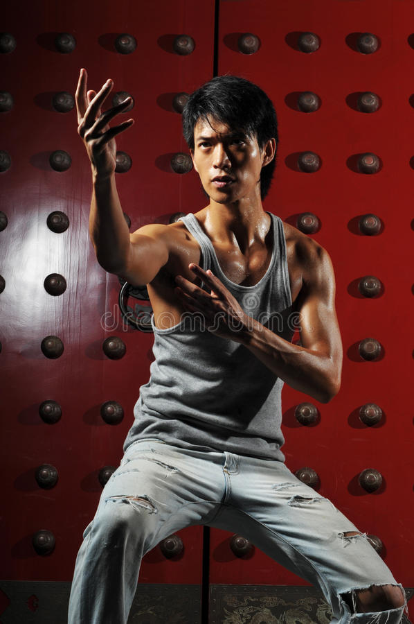 Download Asian Man In Fighting Action Stock Image - Image of jump, asia: 10161649