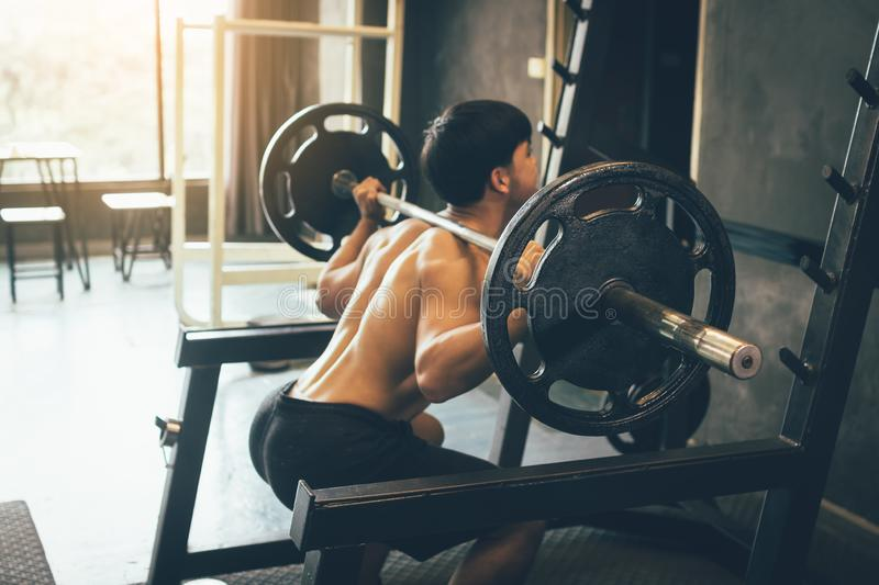 Asian man performing barbell squats at the indoor gym.  royalty free stock image