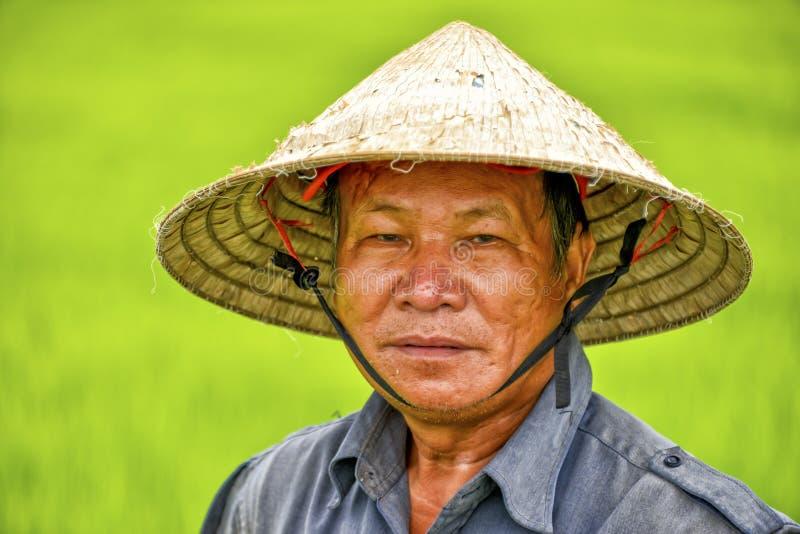 [Image: asian-man-rice-field-portrait-vietnamese...854676.jpg]