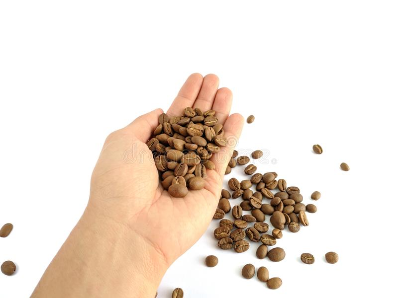 Asian man`s hands holding coffee beans isolated on white royalty free stock image