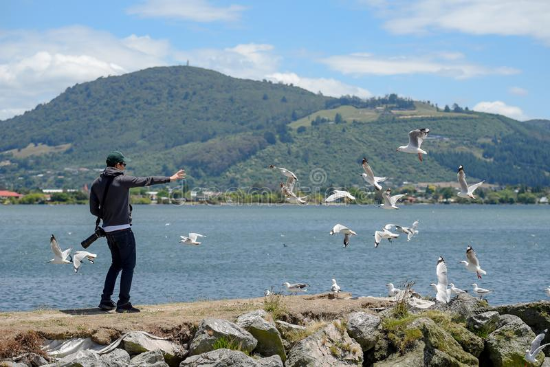 Asian man tourist chasing seagull by the lake stock image