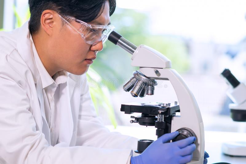 Asian medical doctor working in research lab. Science assistant making pharmaceutical experiments. Chemistry, medicine. Asian medical doctor working in research stock image