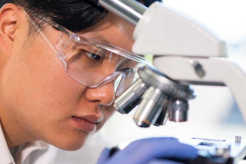 Asian medical doctor working in research lab. Science assistant making pharmaceutical experiments. Chemistry, medicine. Asian medical doctor working in research royalty free stock images