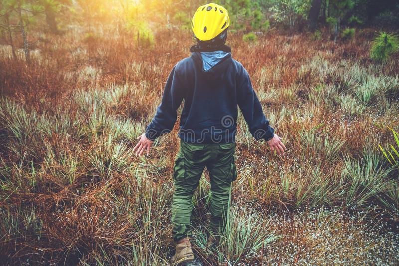 Asian men travel  Nature. Travel relax. Touch natural mountain meadow. walk in the forest. Thailand. Asian man travel  Nature. Travel relax. Touch natural royalty free stock photos