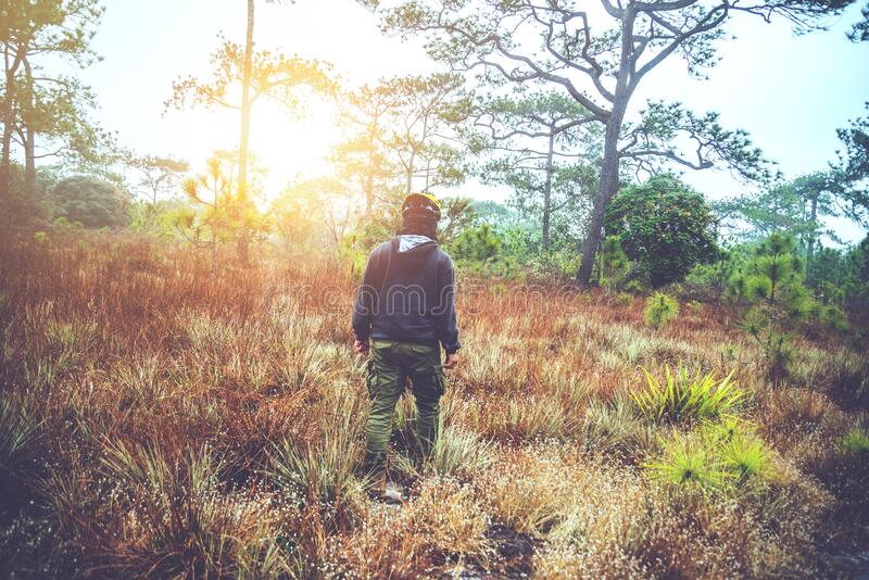 Asian men travel  Nature. Travel relax. Touch natural mountain meadow. walk in the forest. Thailand. Asian man travel  Nature. Travel relax. Touch natural stock photos