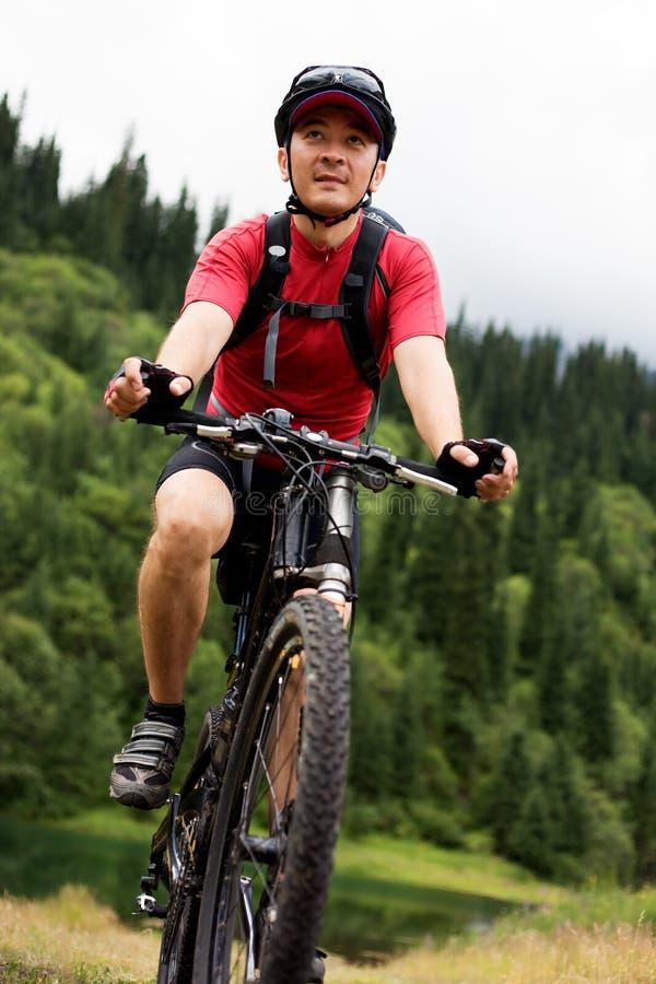Asian mountain biker stock photography