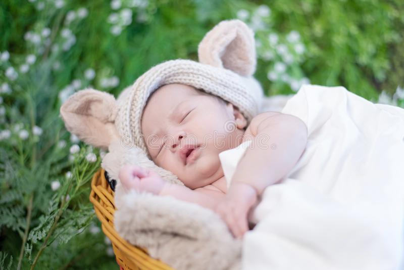 Asian newborn. Lovely kid and little child royalty free stock image