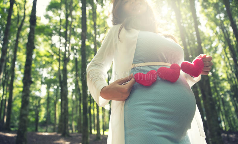 Asian pregnant woman in blue dress in the florest background holding heart shape accessories. A portrait of an asian pregnant woman in blue dress in the florest stock photo