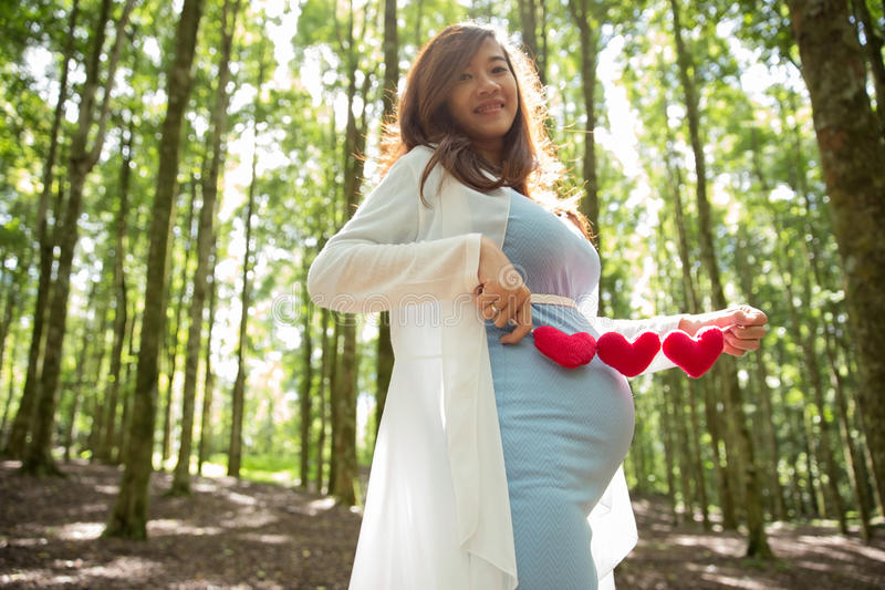 Asian pregnant woman in blue dress in the florest background holding heart shape accessories. A portrait of an asian pregnant woman in blue dress in the florest royalty free stock image