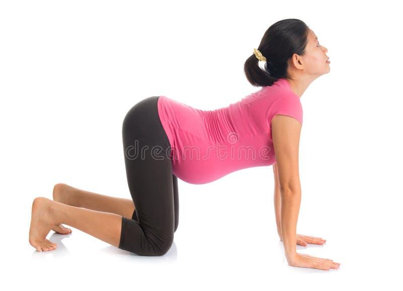 Asian pregnant yoga position cat pose.