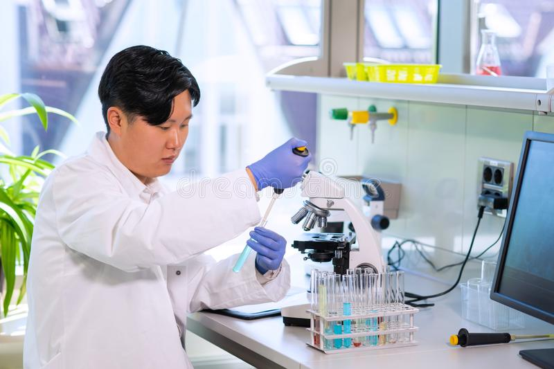 Asian scientist working in lab. Doctor making microbiology research. Laboratory tools: microscope, test tubes, equipment. Biotechnology, chemistry royalty free stock images
