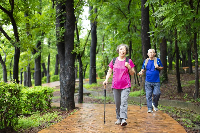 senior couple hiking on the forest park stock images