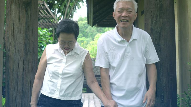 Asian senior couple smiling happy in green tree background royalty free stock images