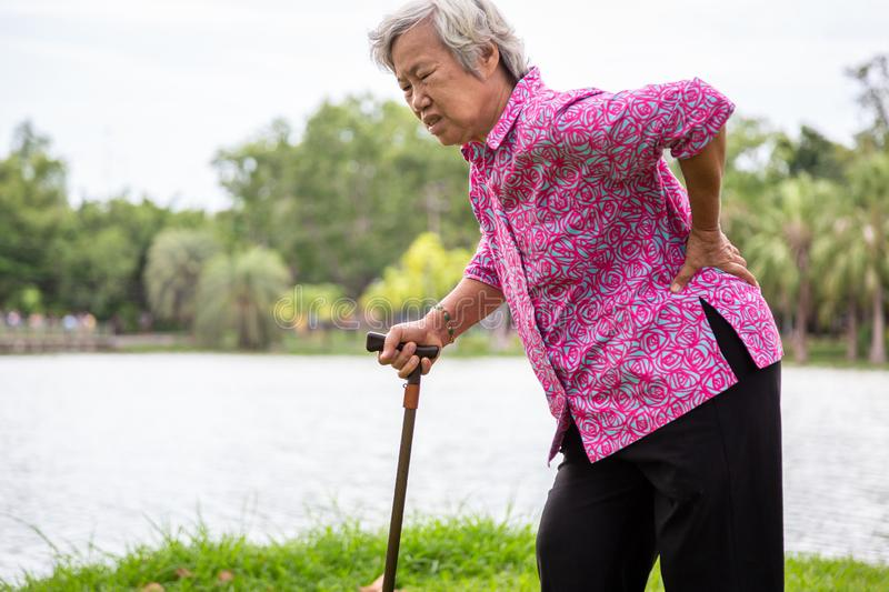 Asian senior woman with hip joint pain while walking in nature in summer,female patient having backache,lumbago pain,hands. Touching on the hip in outdoor park stock photos