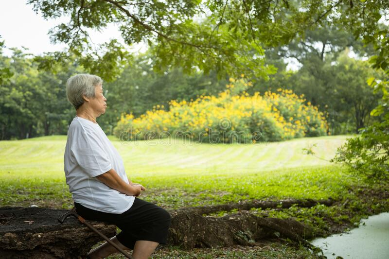 Asian senior woman very calm in green nature at park,meditation can have a role in treating anxiety, depression and pain,female. Elderly person sit upright with royalty free stock image
