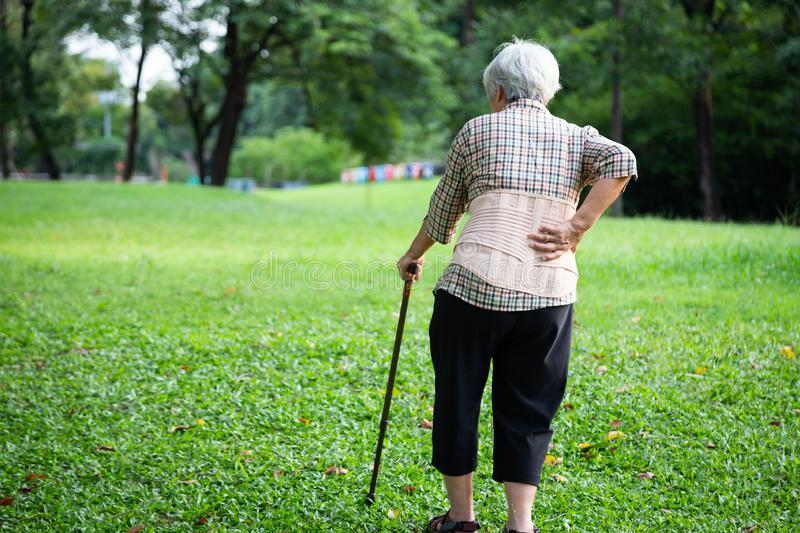 Asian senior woman wearing back support belt for protect her back pain,muscle injury,elderly people hand touching on the hip royalty free stock photography