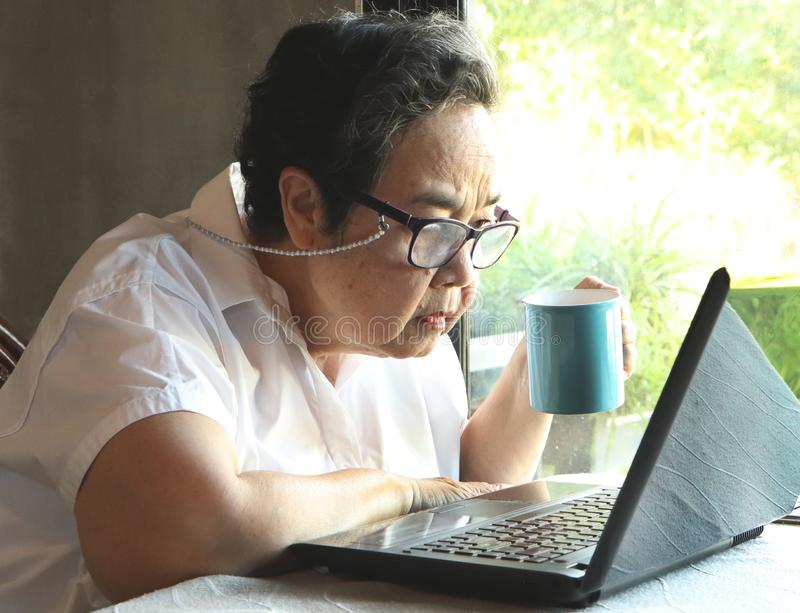Asian senior woman wearing eyeglasses sitting by the window holding blue cup of coffee looking closer at computer laptop royalty free stock image