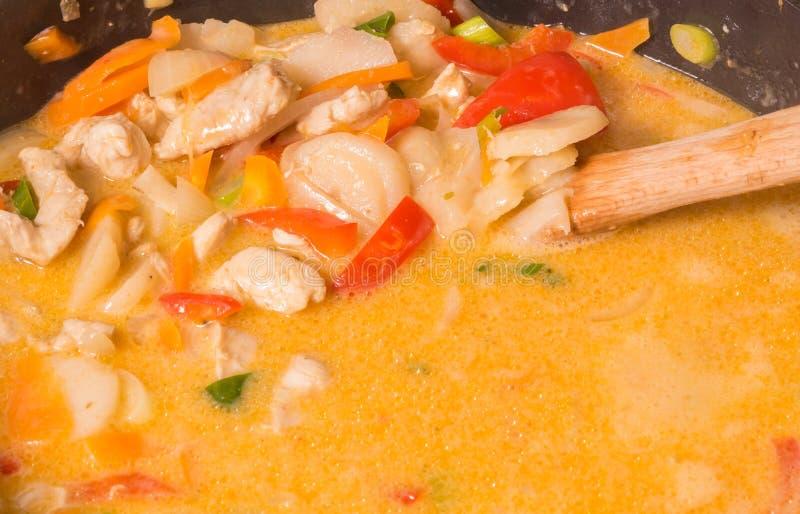 Asian stew 2 royalty free stock photo