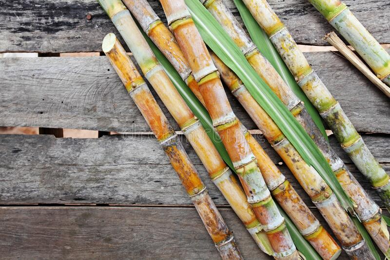 Asian sweet cane on wooden background stock image