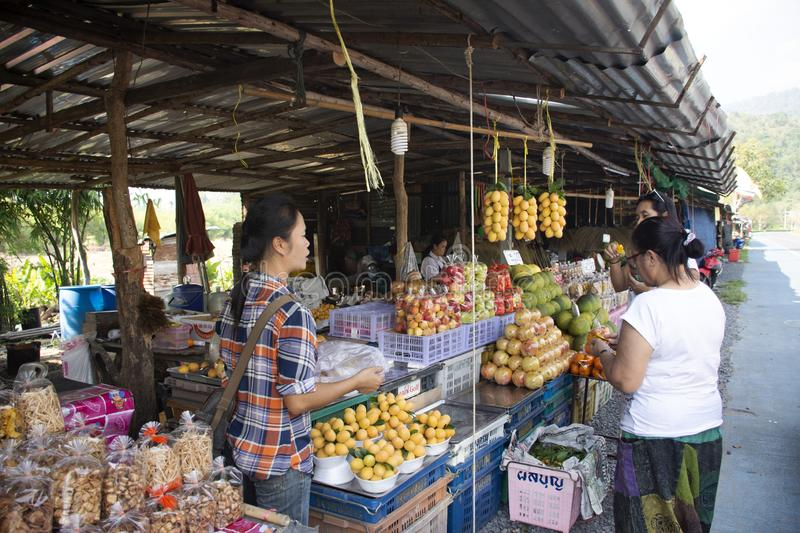 Asian thai old women test eat and buy shopping Marian plum or gandaria or plum mango at local shop in Nakhon Nayok, Thailand stock images