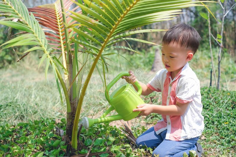 Asian toddler boy watering young tree with watering can royalty free stock photo