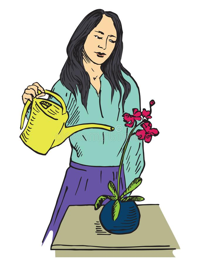 Asian woman carefully watering red orchid flower in pot. Asian woman carefully watering orchid, hand drawn doodle, sketch in pop art style, vector color royalty free illustration