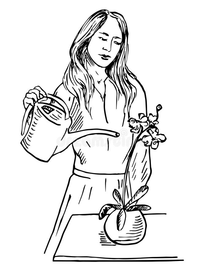 Asian woman carefully watering orchid. Hand drawn doodle, sketch in pop art style, vector outline illustration royalty free illustration