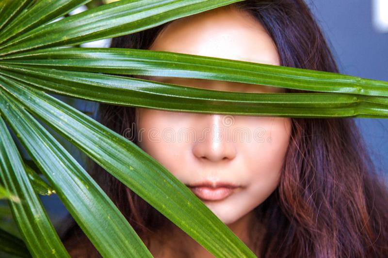 A beautiful woman is hiding behind palm leaves. Eastern beauty and skin care. stock images